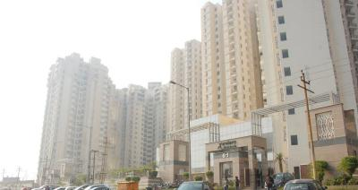 Gallery Cover Image of 408 Sq.ft 1 RK Apartment for rent in Urbtech Xaviers, Sector 168 for 11000