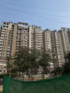 Project Image of 815.0 - 4115.0 Sq.ft 1 BHK Apartment for buy in Amrapali Silicon City