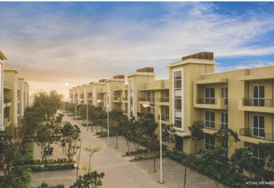 Gallery Cover Image of 1436 Sq.ft 3 BHK Independent Floor for rent in BPTP Parklands Pride, Sector 77 for 15000