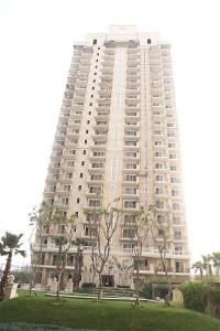Gallery Cover Image of 1195 Sq.ft 2 BHK Apartment for rent in Ace Golf Shire, Sector 150 for 11500