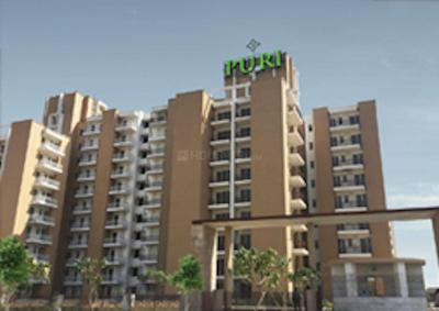 Gallery Cover Image of 1300 Sq.ft 2 BHK Apartment for rent in Puri Pratham, Sector 84 for 17500