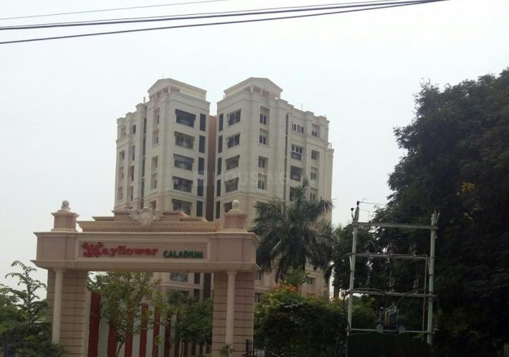 Project Image of 1448 - 1916 Sq.ft 2 BHK Apartment for buy in Mayflower Caladium