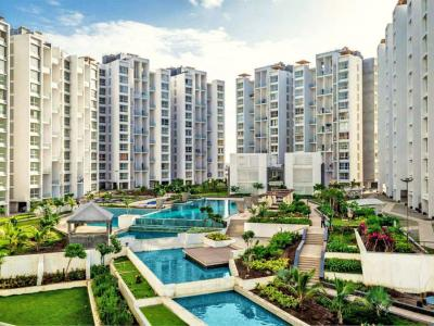 Gallery Cover Image of 1255 Sq.ft 2 BHK Apartment for rent in Marvel Fria, Wagholi for 19000