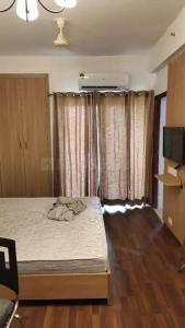 Gallery Cover Image of 506 Sq.ft 1 RK Apartment for rent in Nimbus The Golden Palms, Sector 168 for 13500