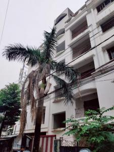 Gallery Cover Image of 1200 Sq.ft 3 BHK Apartment for buy in Haltu for 6500000