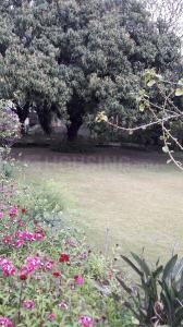 5400 Sq.ft Residential Plot for Sale in Jakhan, Dehradun