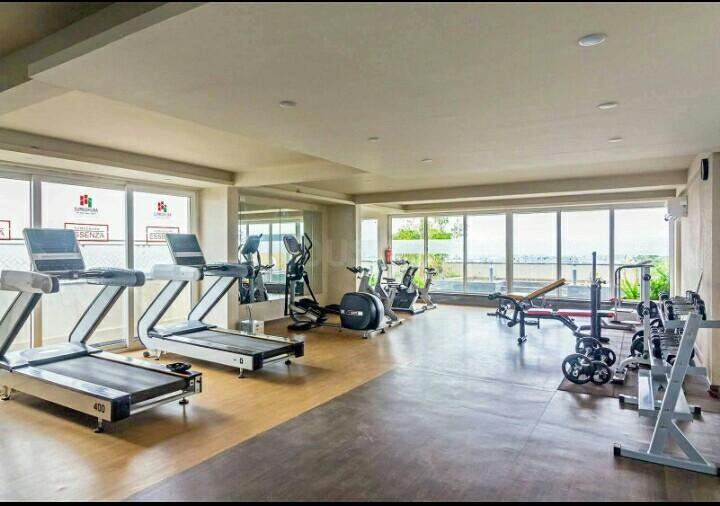 Gym Image of Zolo in Whitefield