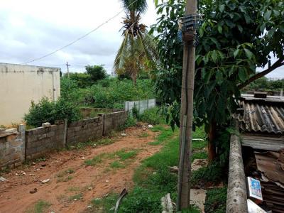 4000 Sq.ft Residential Plot for Sale in Jakkur, Bangalore