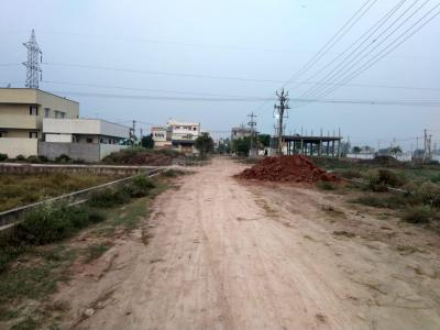 48000 Sq.ft Residential Plot for Sale in Paidichintapadu, Eluru