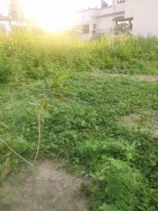 1500 Sq.ft Residential Plot for Sale in Dehrakhas, Dehradun