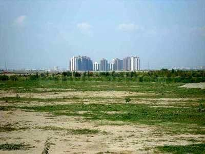900 Sq.ft Residential Plot for Sale in Neharpar Faridabad, Faridabad