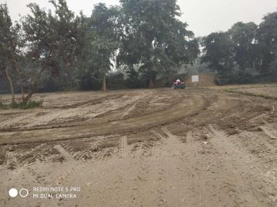 1375 Sq.ft Residential Plot for Sale in Lalbagh, Patna