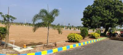 3150 Sq.ft Residential Plot for Sale in Pallakadiyam, Rajahmundry