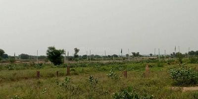 Gallery Cover Image of  Sq.ft Residential Plot for buy in Raksa for 300000