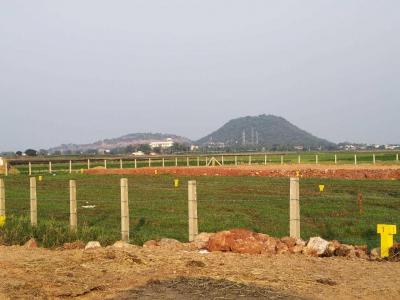 Gallery Cover Image of  Sq.ft Residential Plot for buy in Veterinary Colony for 900000