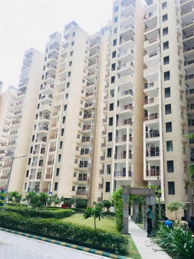 Building Image of 1250 Sq.ft 3 BHK Apartment for rent in Raj Nagar Extension for 8000