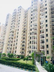 Gallery Cover Image of 1250 Sq.ft 3 BHK Apartment for rent in Raj Nagar Extension for 8000