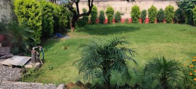 2600 Sq.ft Residential Plot for Sale in Kaonli, Dehradun