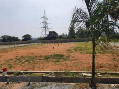 999 Sq.ft Residential Plot for Sale in BTM Layout, Bangalore
