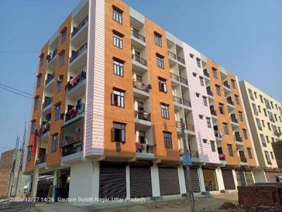 Gallery Cover Image of 650 Sq.ft 1 BHK Apartment for buy in Noida Extension for 1500000