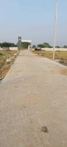 Gallery Cover Image of 1000 Sq.ft Residential Plot for buy in SSDN Shri Rudraaksh City, Bada Bangarda for 1696000