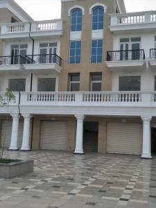 Gallery Cover Image of 696 Sq.ft 1 BHK Apartment for rent in Sector 14 for 8000