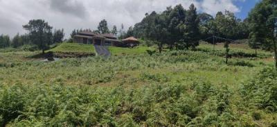 10715 Sq.ft Residential Plot for Sale in Coonoor, Nilgiris