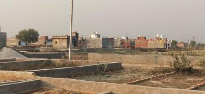 902 Sq.ft Residential Plot for Sale in Noida Extension, Greater Noida