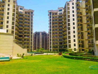 Gallery Cover Image of 2200 Sq.ft 4 BHK Apartment for buy in Parker Residency, Badh Khalsa for 7600000