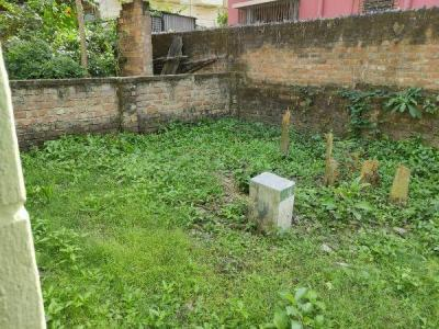 1623 Sq.ft Residential Plot for Sale in Kalighat, Kolkata