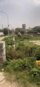 240 Sq.ft Residential Plot for Sale in Sector 63 A, Noida