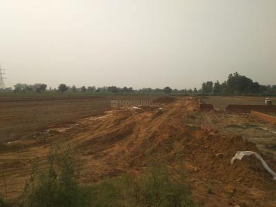 1000 Sq.ft Residential Plot for Sale in Panchayatan Inayatpur, Greater Noida