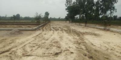 Gallery Cover Image of  Sq.ft Residential Plot for buy in Gomti Nagar for 649000