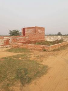 Gallery Cover Image of  Sq.ft Residential Plot for buy in Sector 150 for 175000