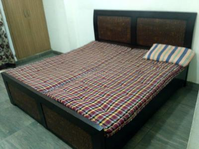 Gallery Cover Image of 1350 Sq.ft 3 BHK Apartment for rent in Noida Extension for 14000