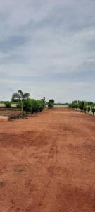 1500 Sq.ft Residential Plot for Sale in Kodurupadu, Krishna
