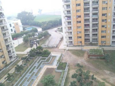 Gallery Cover Image of 2105 Sq.ft 3 BHK Apartment for rent in Sector 82 for 20000