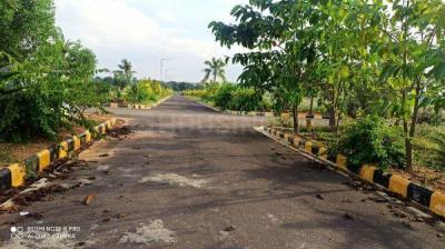 167 Sq.ft Residential Plot for Sale in Mucherla, Hyderabad