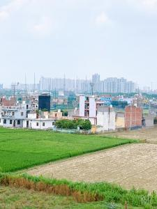 720 Sq.ft Residential Plot for Sale in Sector 123, Noida