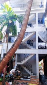 Gallery Cover Image of 400 Sq.ft 1 RK Apartment for rent in Kalamboli for 4500