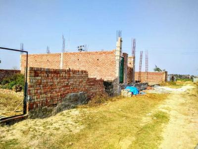 450 Sq.ft Residential Plot for Sale in Shahberi, Greater Noida