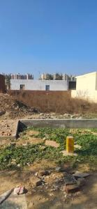 220 Sq.ft Residential Plot for Sale in Noida Extension, Greater Noida