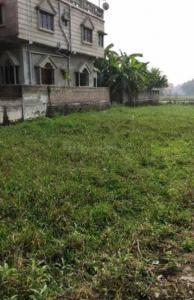 1440 Sq.ft Residential Plot for Sale in Shibpur, Howrah