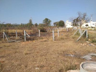800 Sq.ft Residential Plot for Sale in Tippenahalli, Bangalore