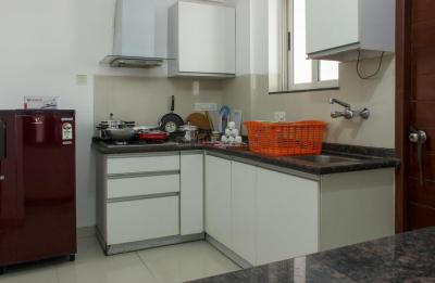 Kitchen Image of PG 4643650 Magarpatta City in Magarpatta City