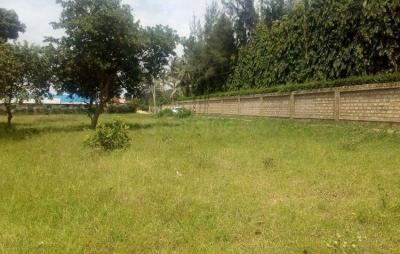 Gallery Cover Image of  Sq.ft Residential Plot for buy in Ghitorni for 440000000