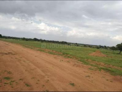 200 Sq.ft Residential Plot for Sale in Maisigandi, Hyderabad