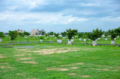 Gallery Cover Image of  Sq.ft Residential Plot for buy in Padapai for 1680000
