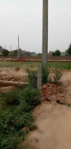 Gallery Cover Image of 50 Sq.ft Residential Plot for buy in Wave City for 700000