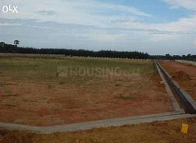 Gallery Cover Image of  Sq.ft Residential Plot for buy in Shamshabad for 7020000
